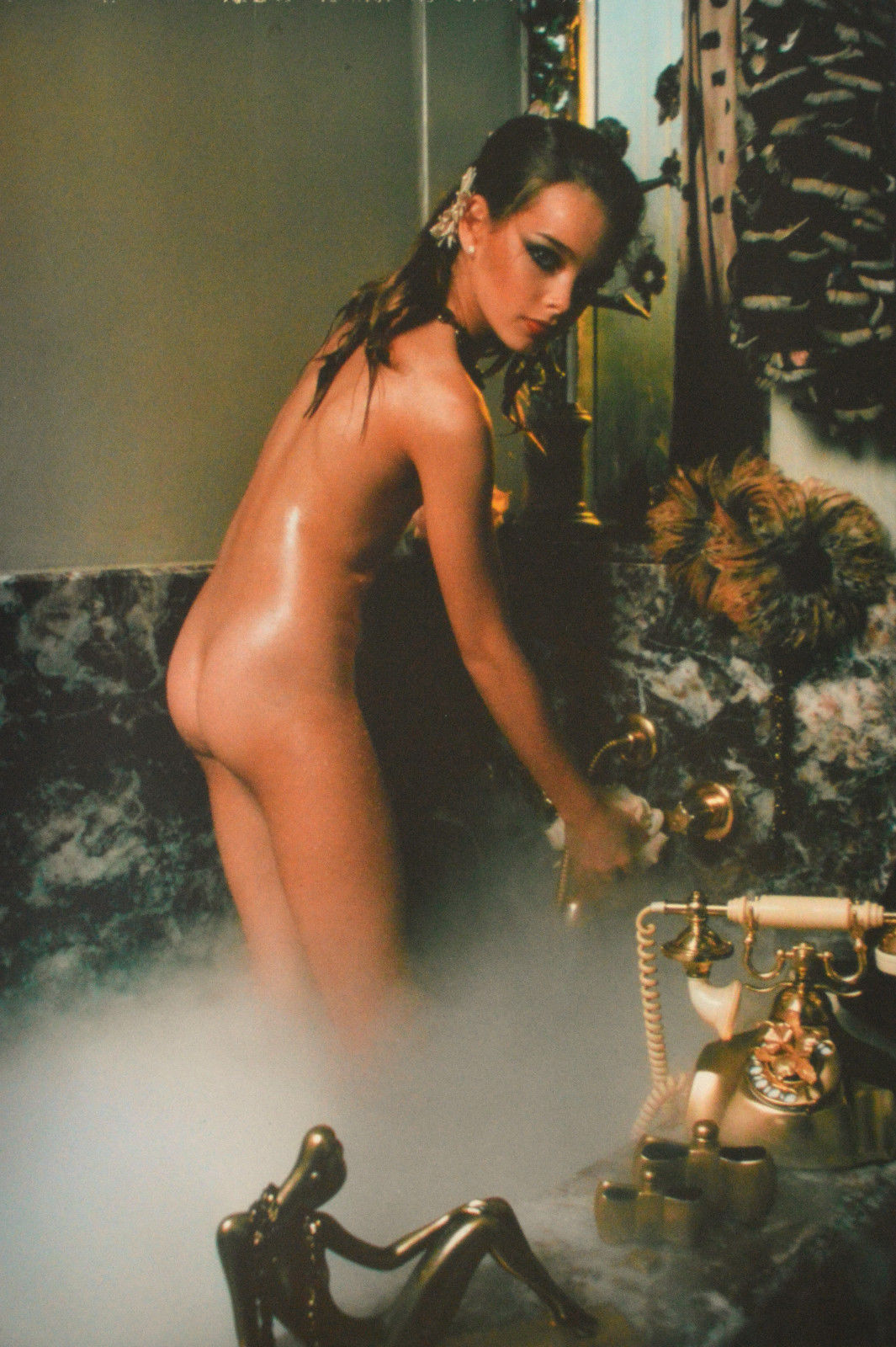 This magnificent Brooke shields porn pictures apologise